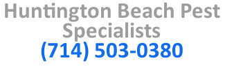 Huntington Beach Pest Specialists